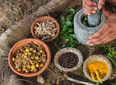 Advanced Ayurveda Cooking Classes at Haritha Yogshala, India