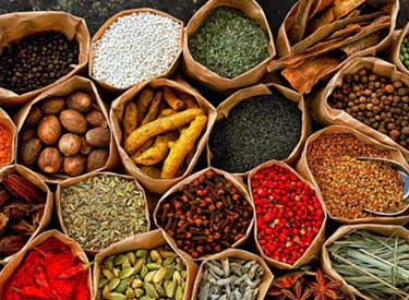 ayurveda culinary, ayurveda cooking classes in India, Ayurveda cooking classes in Rishikesh