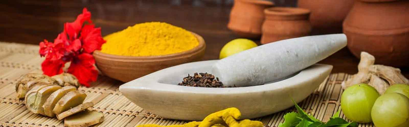 Ayurveda Cooking Certification Course in Rishikesh, India