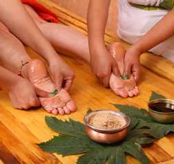 Haritha Yogshala Rishikesh - Yoga and Ayurveda Gallery-1